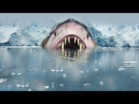 9 Most Terrifying Creatures Found In Alaska!