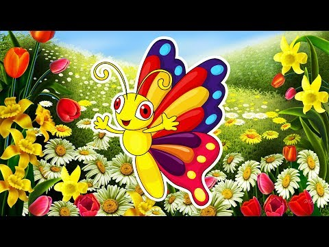 Смотреть мультфильм бабочки