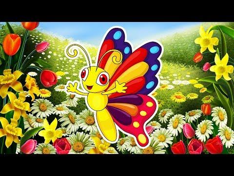 Бабочки феи мультфильм смотреть онлайн