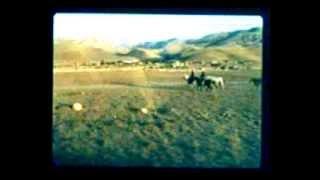 ham meyvayı kopardılar dalından  İzlesene.com Video 2017 Video