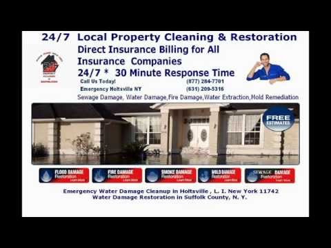 Black Mold Removal Holtsville NY| Mold on Drywall Holtsville NY