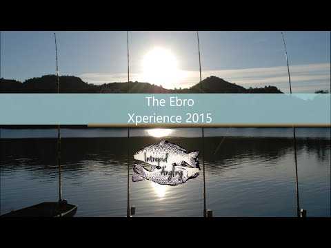 Cat Fishing - Ebro Xperience 2015 FULL MOVIE!!!