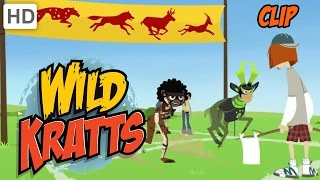 Wild Kratts - Olympic Medley: Racing, Diving and Swimming