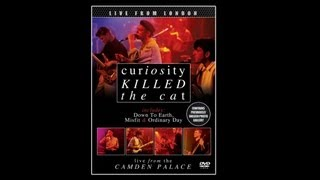 Curiosity Killed The Cat - Bullet
