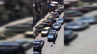 Napoli, pitbull aizzato contro gli agenti: la polizia spara, poi soccorre il cane che però muore