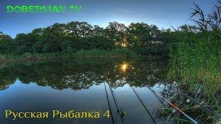 Російська Рибалка 4 -Ловля на р. Сура Густерка на ПВА