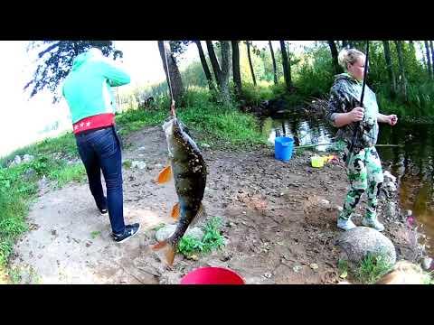 Рыбалка и грибы # Карельский перешеек