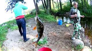 Рибалка і гриби # Карельський перешийок