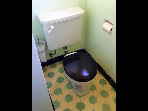 1929 Crane NEUCLO Toilet - TEPECO - Trenton Potteries - Antique