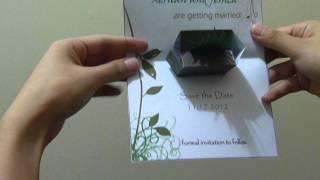 Fern In A Planter Pop Up Card
