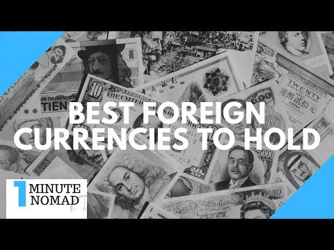 Which Foreign Currencies Should I Hold? | #OneMinuteNomad