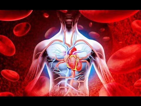 Продукты укрепляющие сердце. Ешьте зелень!