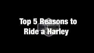 Top 5 Reasons to Ride a Harley Davidson!