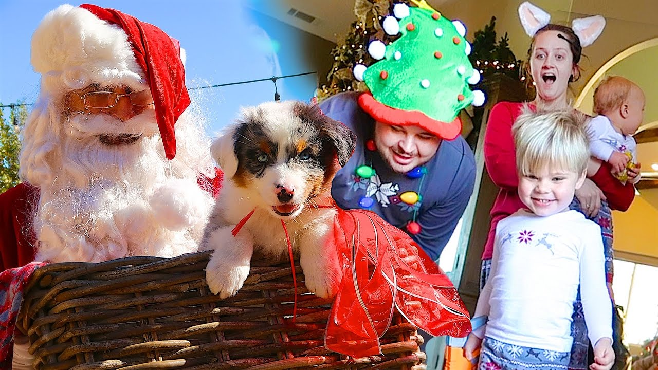CHRISTMAS PUPPY SURPRISE! - SANTA CAUGHT ON CAMERA- Daily Bumps ...