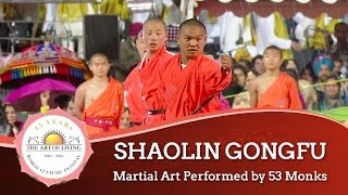 Shaolin Gongfu - Martial Art, China | World Culture Festival 2016