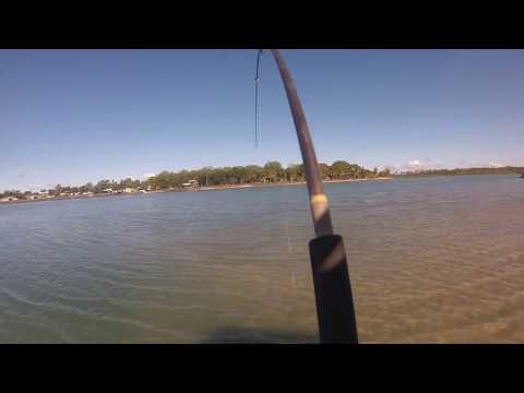 Beelbi creek fishing trip 2016
