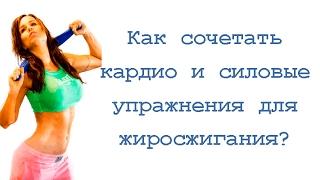 Как сочетать кардио и силовые упражнения для жиросжигания?