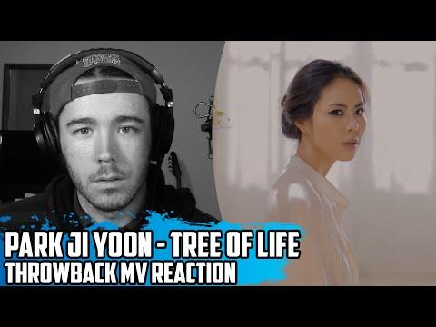 Park Ji Yoon(박지윤) - Tree of Life(나무가 되는 꿈) | Throwback MV Reaction