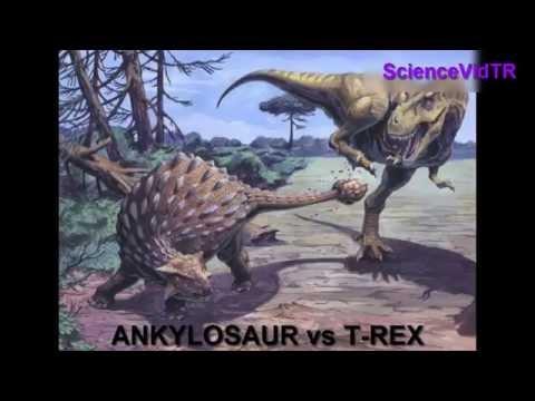 Bazı Dinozor Türleri ve İsimleri ( Dinosaur Species )
