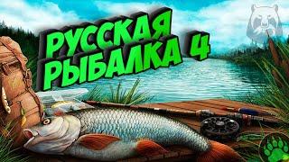 Русская рыбалка4 турнир Розыгрыш премов неделя рр4 топ игра