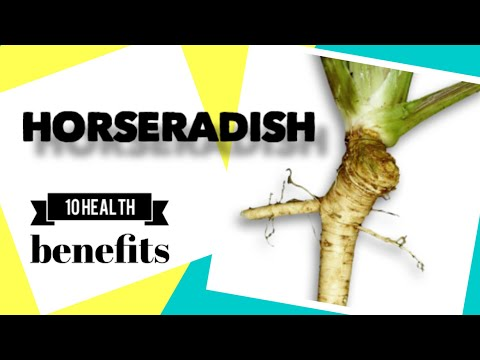 10 Health Benefits of Horseradish | Herbal Medicine