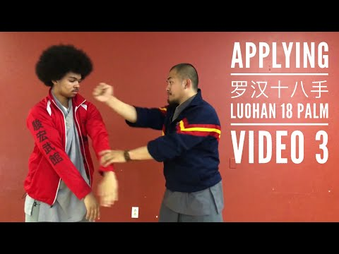 Kung Fu Applications | Luohan 18 Palm  | Part 3