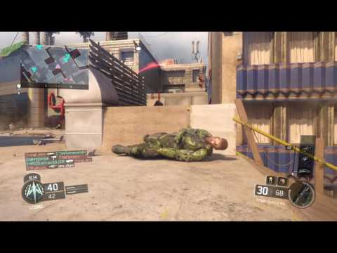 """Call of Duty®""""Playing team deathmach with majestic will"""
