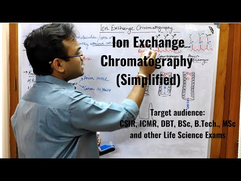 Ion Exchange Chromatography (Simplified)