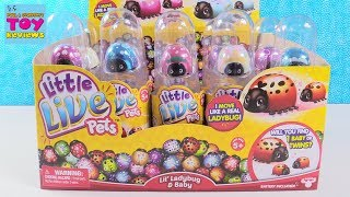 Little Live Pets Lil Ladybug & Baby Surprise Blind Bag Toy Review | PSToyReviews