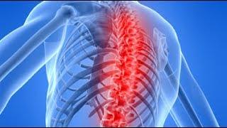 chiropractor back pain specialist Hammersmith