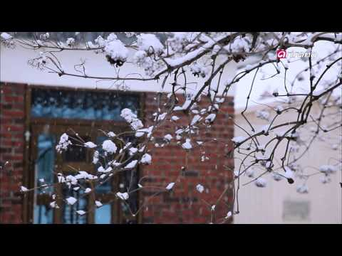 In Frame Ep19 DMZ: War and Peace 전쟁과 평화, DMZ