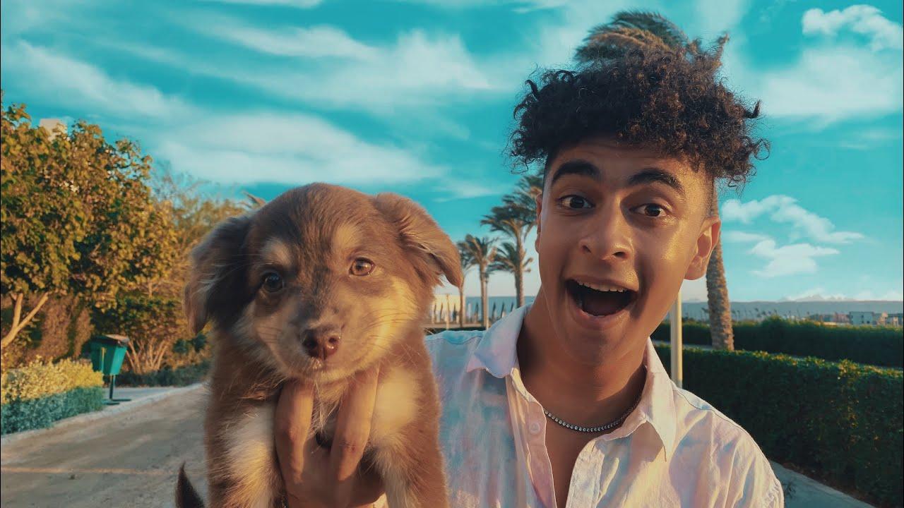 اشتريت اكتر كلب كيوت في مصر !🥺❤️
