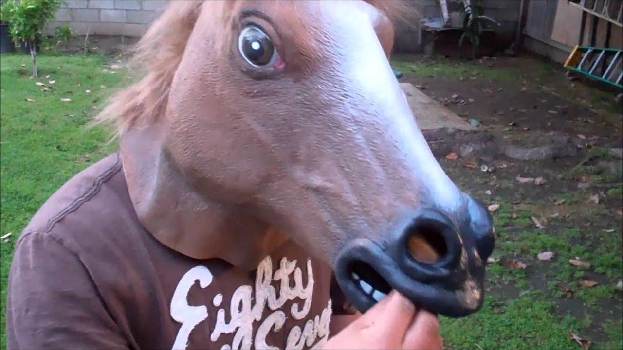 Horse beats cracker challenge!