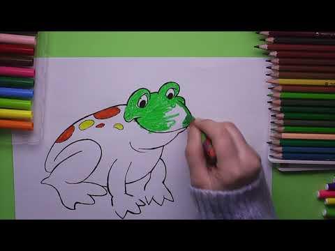 Kurbaga Boyama Kurbaga Nasil Boyanir Coloring Frog Youtube
