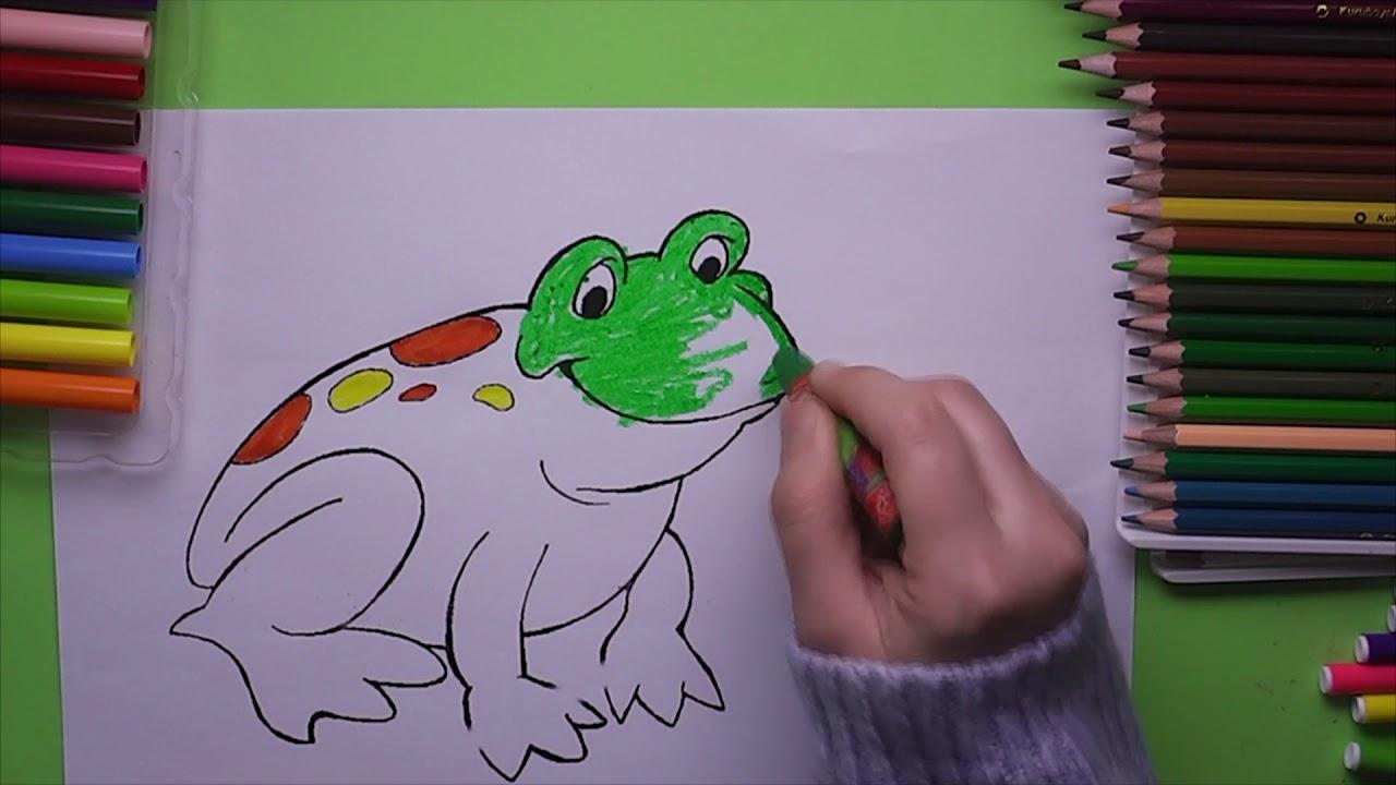 Kurbağa Boyama Kurbağa Nasıl Boyanır Coloring Frog Youtube