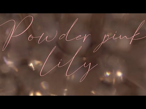 Youtube: Powder pink / Lily