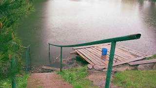 Послушайте нежный звук дождя возле озера под целебное кваканье лягушек.