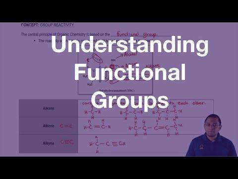 Understanding the Types of Functional Groups