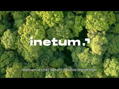 Inetum, Positive digital flow [fr]