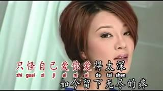 Gambar cover Bu gai ai de ren Angela [ 不该爱的人 安祈尔 ] KTV Lyrics