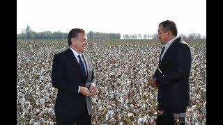 Президент Шавкат Мирзиёев посетил Ташкентскую область (
