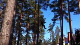 пилим деревья по средствам альпинизма 2(, 2013-03-19T09:30:36.000Z)