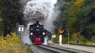Herbstdampf Teil 2: Quer durch den Hexenwald - Harzquerbahn im goldenen Oktober
