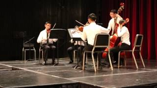 String Quintet: Solo and Ensemble Chamber Music Concert.