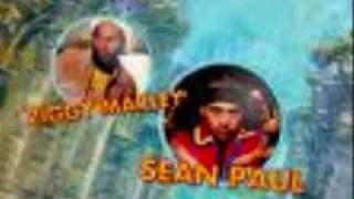 3 Little Birds REMIX By: Sean Paul & Ziggy Marley