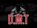 DMT SHOWED ME THE TRUE NATURE OF REALITY | Dorian Yates on psychedelic drugs | London Real