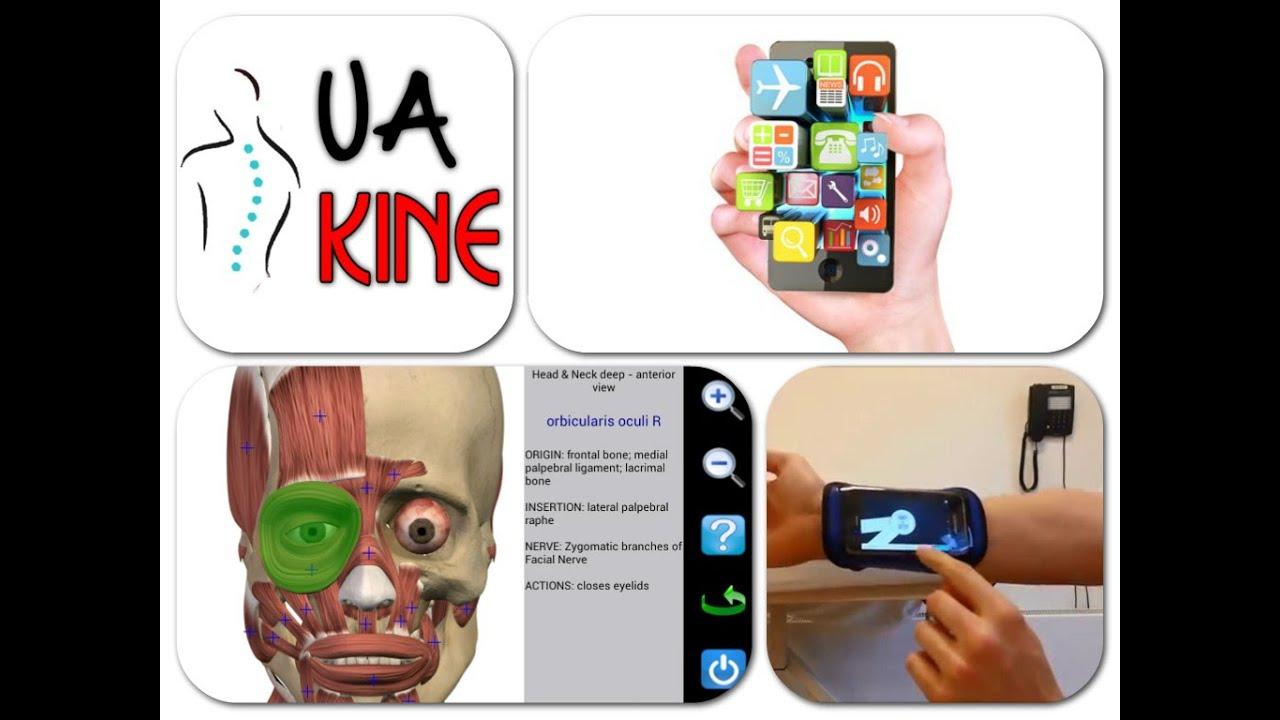 Aplicaciones de fisioterapia para móviles (apps para celulares ...