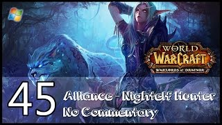 World of Warcraft : Warlords of Draenor【PC】 - Part 45 「Alliance │ Nightelf Hunter │ No Commentary」
