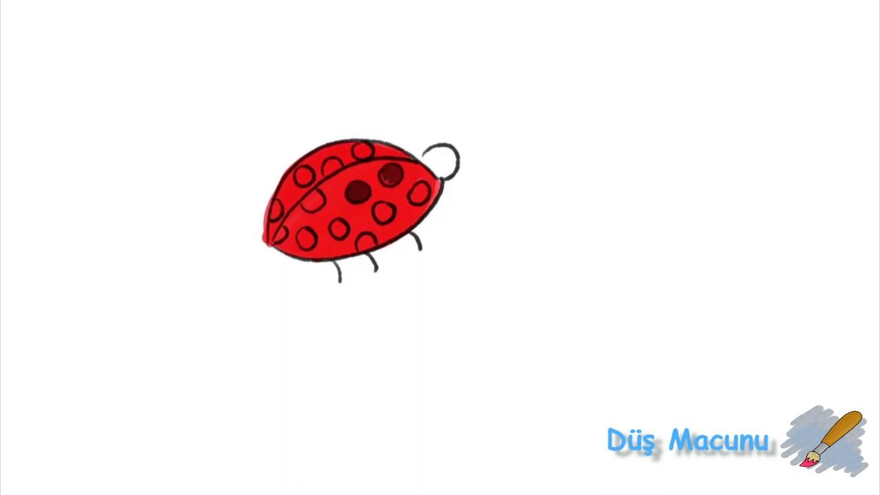Uğur Böceği Nasıl çizilir Salyangoz Ve Tırtıl çizimi Ve Boyaması