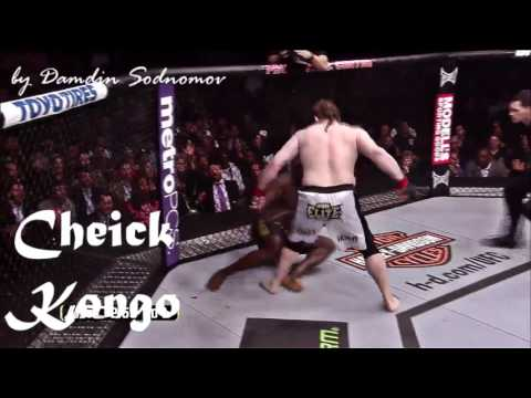 Roy Nelson • Top 5 Brutal Wins
